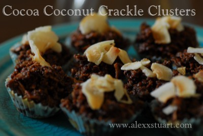 Coconut and Chocolate Clusters