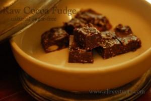 Sugar Free Fudge