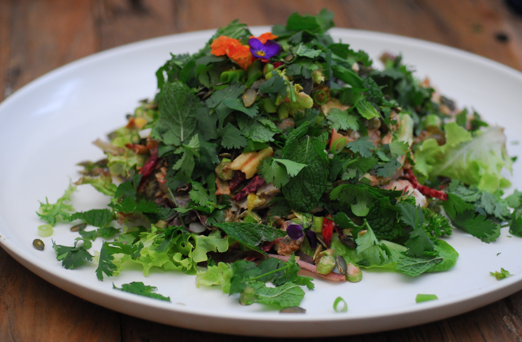 Greens, herb, spice, and citrus salad