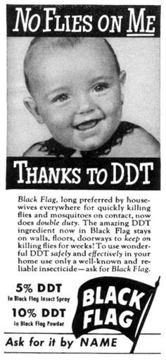 DDT kids ad