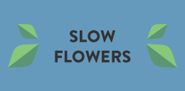 LL-SlowFlowers