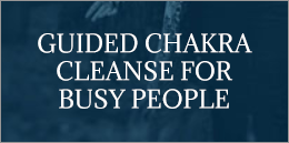 SHOP-ChakraCleanse